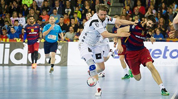 (C) EHF Official Site